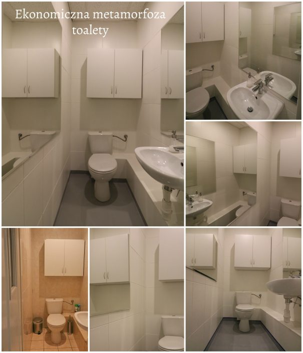 Metamorfoza_toalety